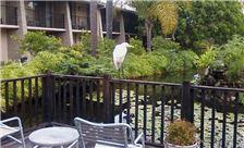Ramada Santa Barbara Amenities - Lagoon Balcony