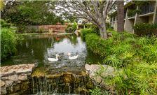 Ramada Santa Barbara - Signature Shot Lagoon
