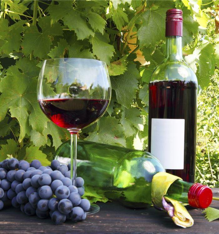 Santa Barbara Hotel Wine Tasting Package